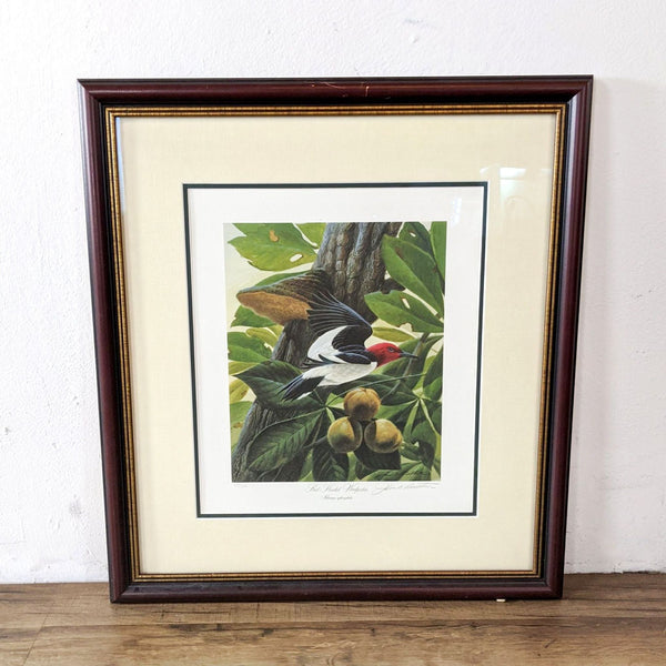 "Framed Litho of ""Red-Headed Woodpecker"" by John A. Ruthven"