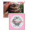 Funny owl ( shade of gray) cross stitch pattern