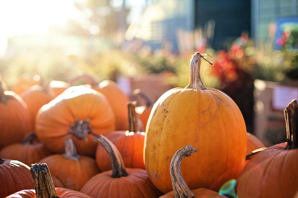 Ways to Repurpose Pumpkins