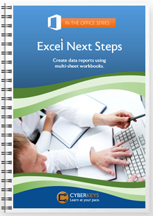 Excel Next Steps