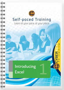 Introducing Excel