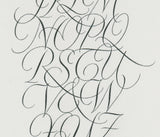 Copperplate Alphabet - Fred Salmon - detail