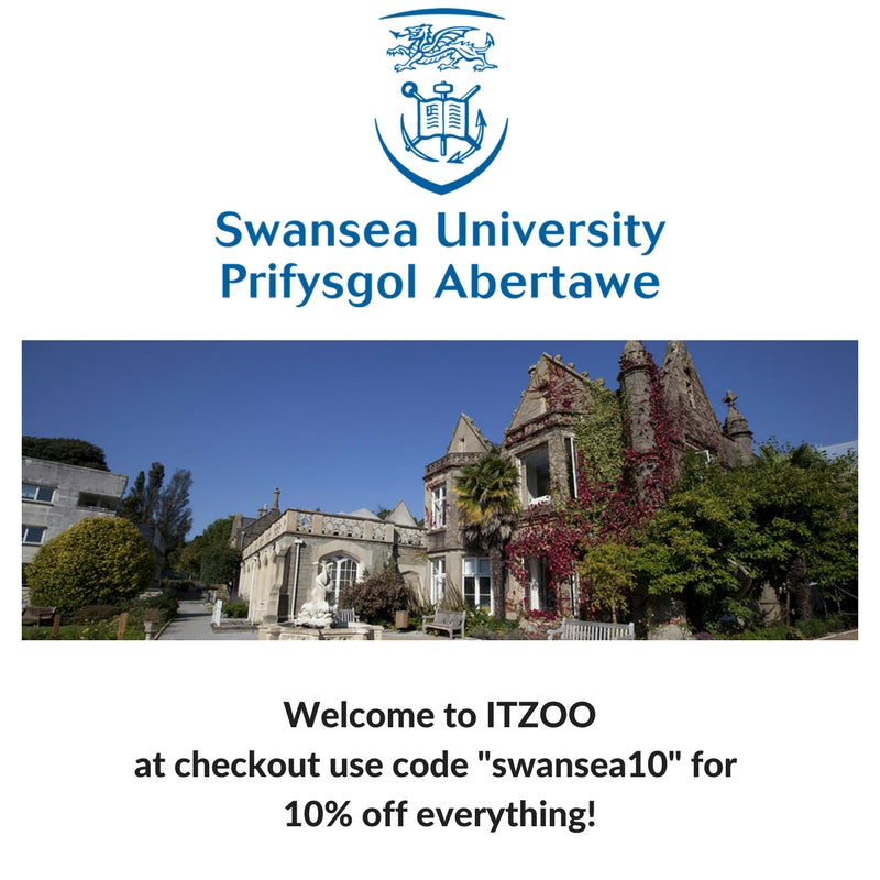 Swansea university email