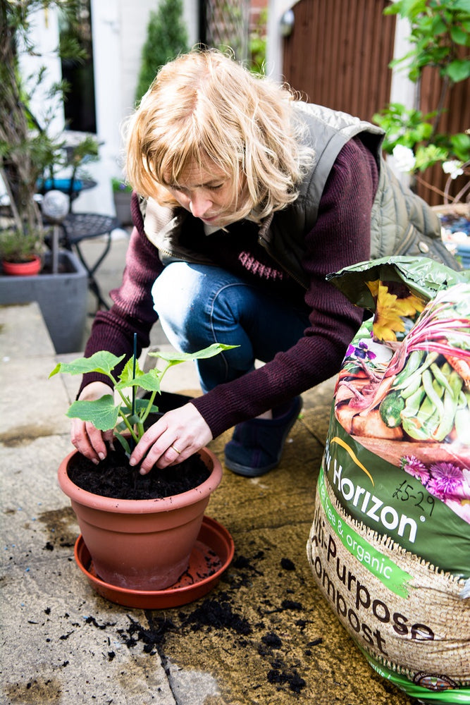 5 Common Gardening Myths Debunked