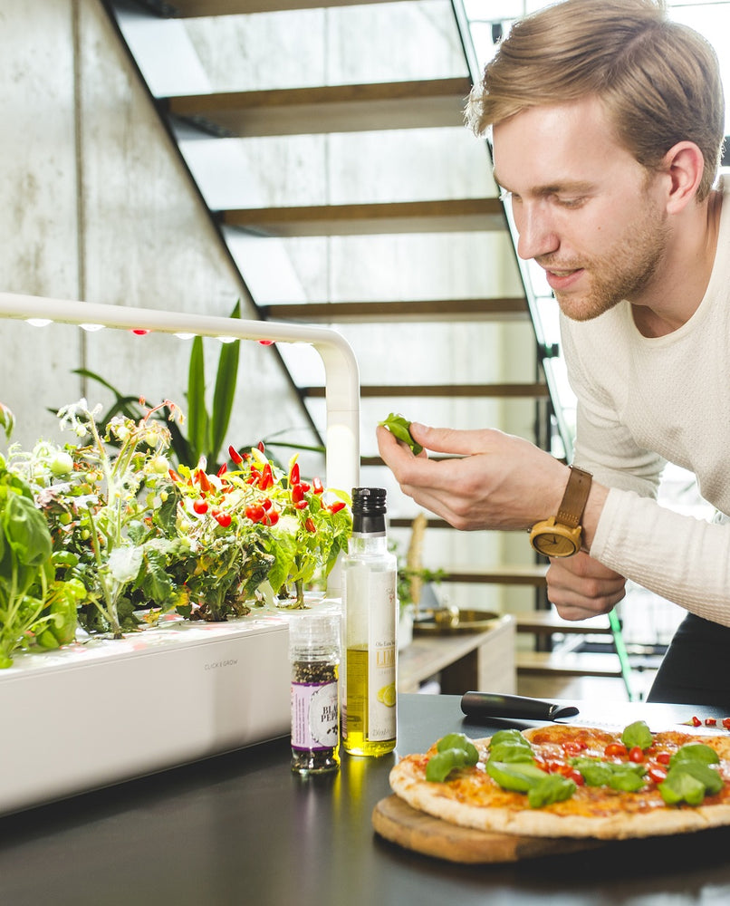 Click and Grow Review: America's Test Kitchen reveals the BEST indoor garden!