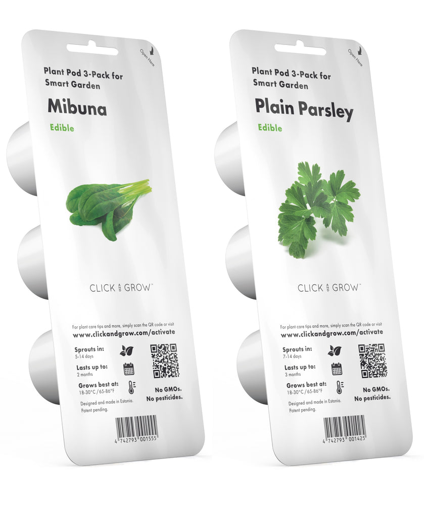 Introducing Our New Plants, Mibuna & Plain Parsley!