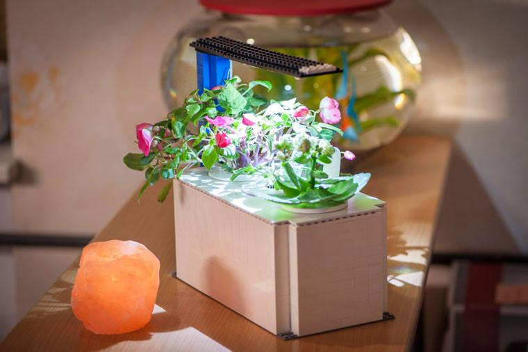 10 Coolest DIY Indoor Garden Concepts With Smart Soil