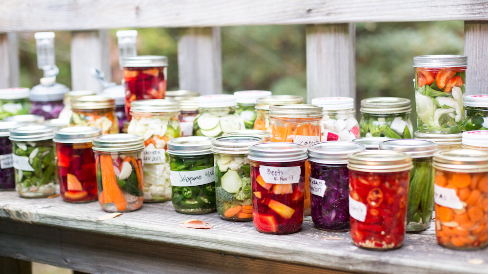 Beginner's Guide to Fermenting Food