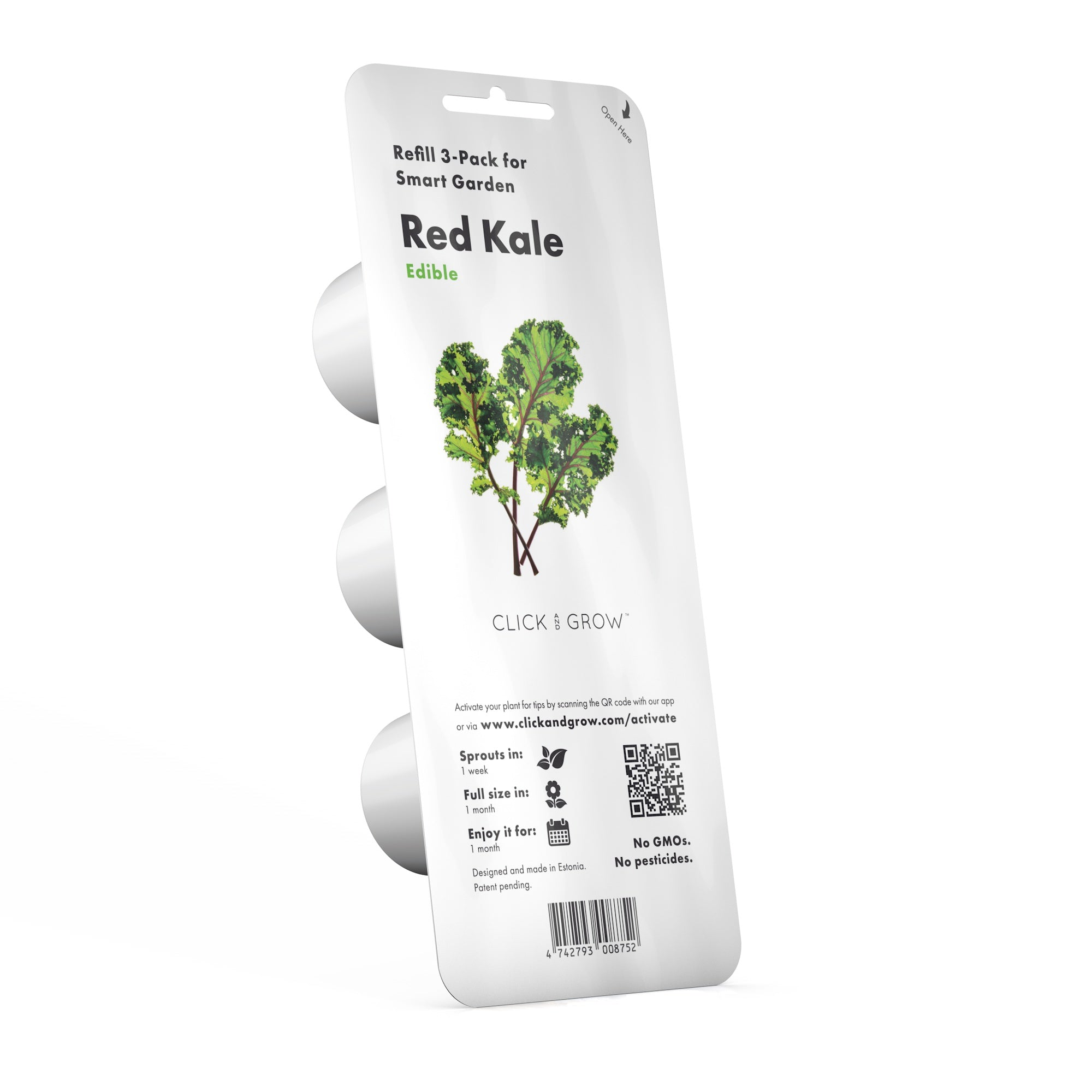 Red Kale Plant Pods