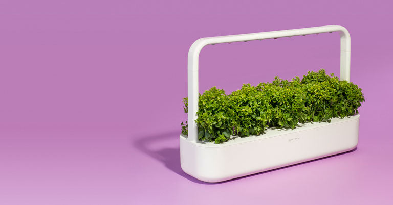 Click & Grow indoor gardens