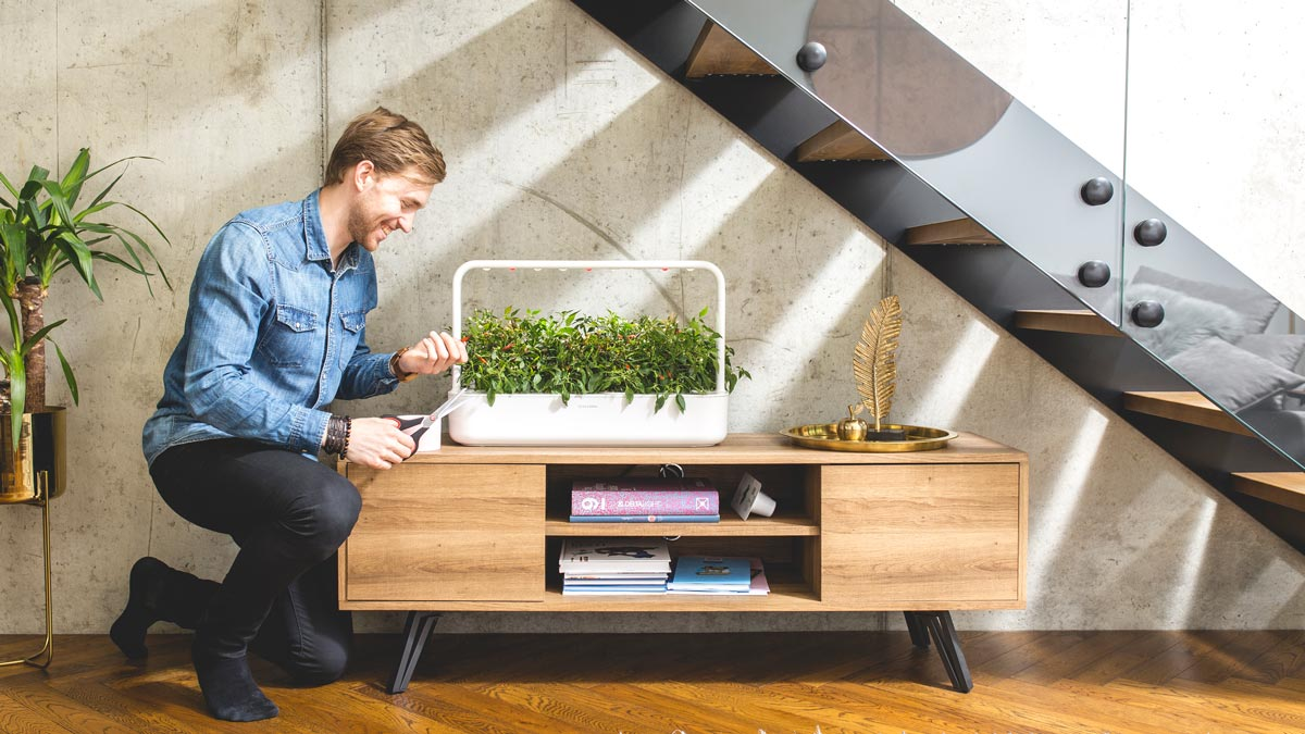 Click & Grow builds smart gardens that bridge the gap between modern life and nature.