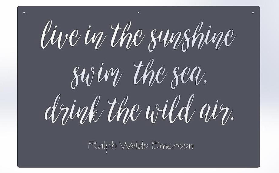 Live in the sunshine swim the sea. drink the wild air. -Ralph Waldo Emerson