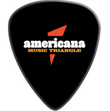 AMT Guitar Pick (3 pack)