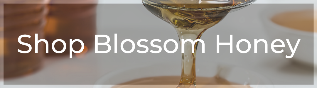 Call-to-Action Button to Shop Blossom Honey