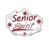 Senior Spirit Charms