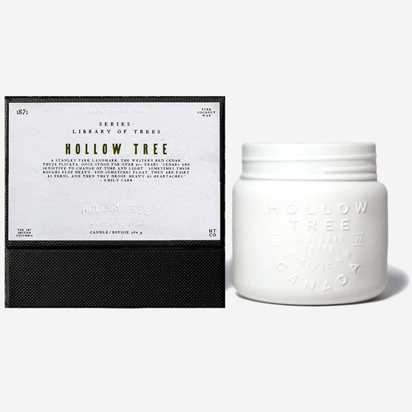 Hollow Tree - Library of Trees - Hollow Tree Candle