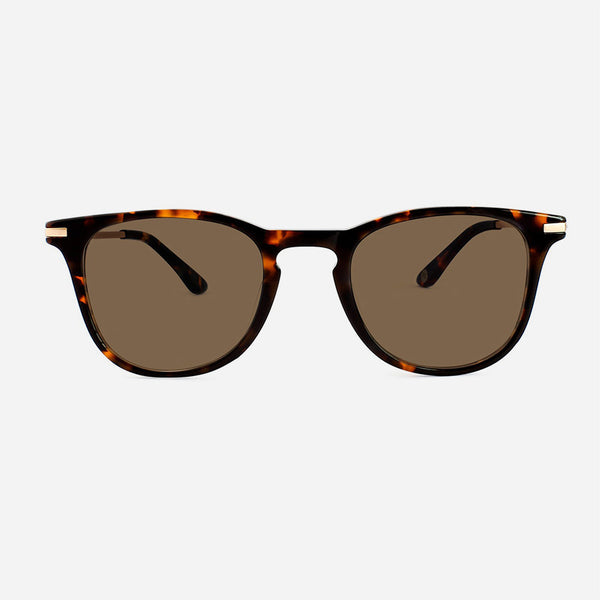 Park and Finch - Rivington 200 - Tortoise/Brown