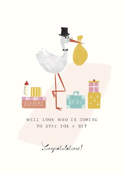 Mr Boddington STORK'S SUITCASES - GREETING CARD | Sweet Threads