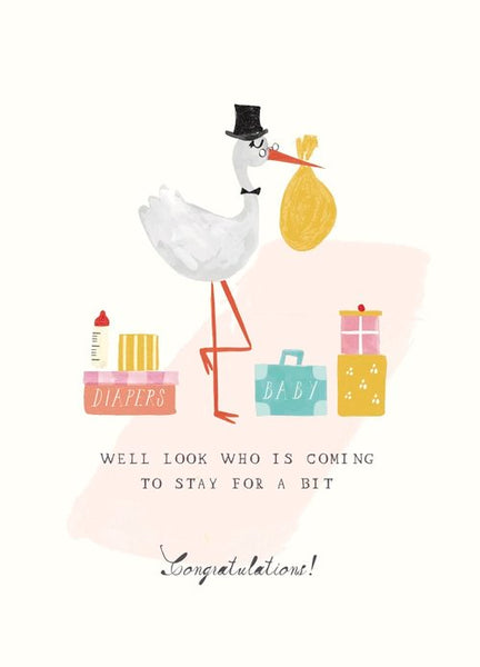 Mr Boddington STORK'S SUITCASES - GREETING CARD