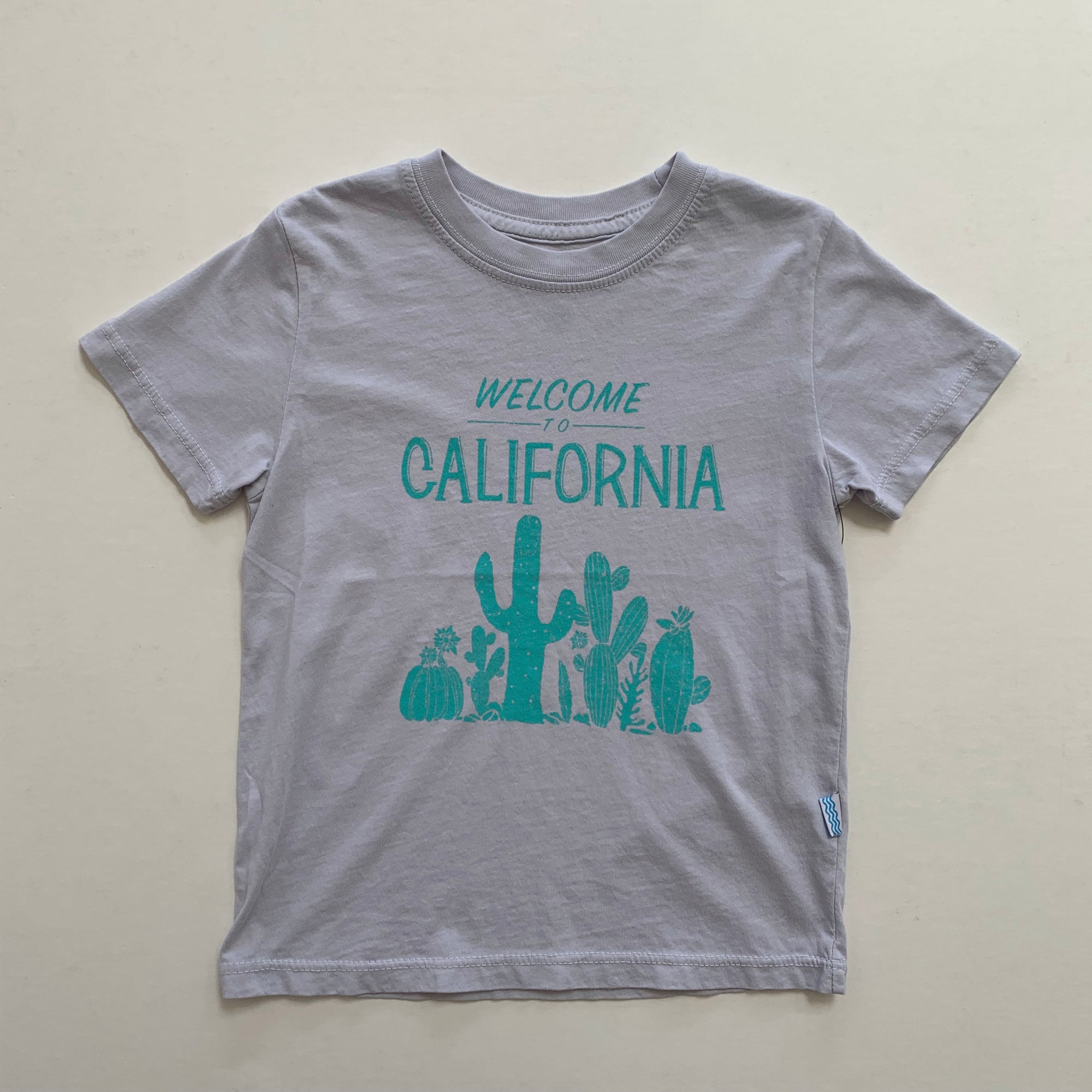 Feather 4 Arrow Welcome to California Vintage Tee in Glacier | Sweet Threads
