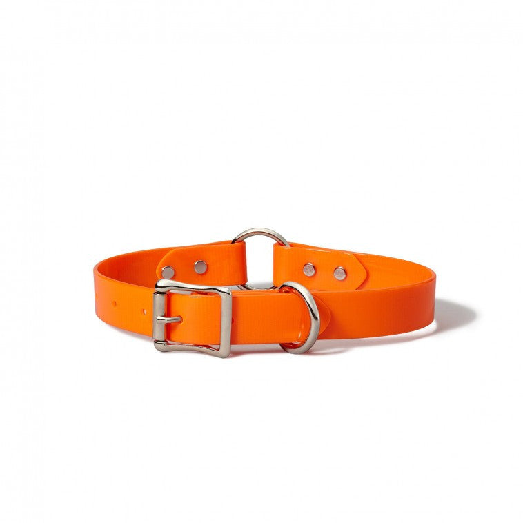 FILSON Webbing Dog Collar, Blaze Orange - The Painted Trout