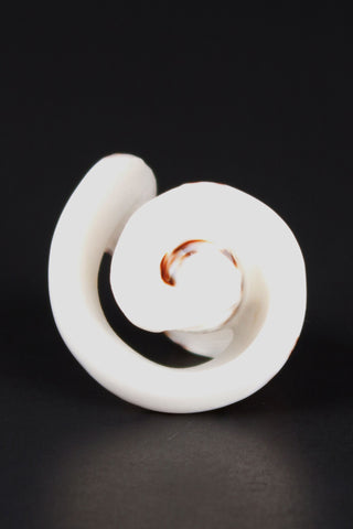 Spotted Spiral Shell Ring
