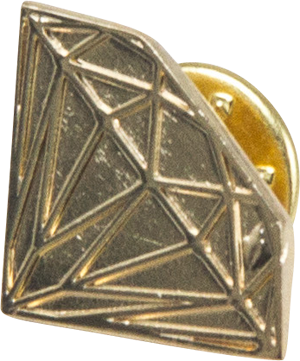 Diamond Brilliant Pin Gold