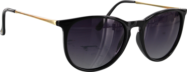 Glassy Sierra Blk/Gold/Smoke Sunglasses Polarized