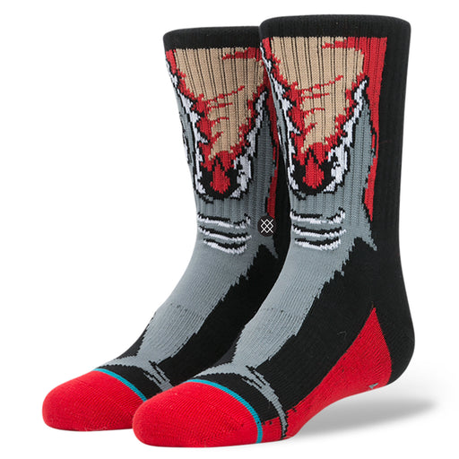 Stance Frenzy Boys Socks