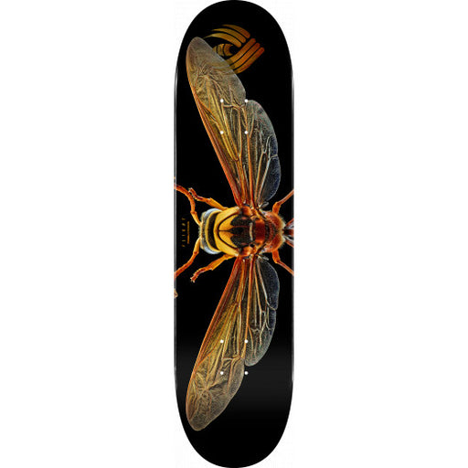 Powell Peralta Biss Potter Wasp Flight Deck - Shape 247 - 8.0""