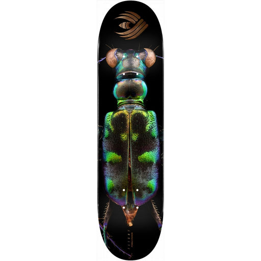 Powell Peralta Biss Tiger Beetle Flight Deck - Shape 248 - 8.25""