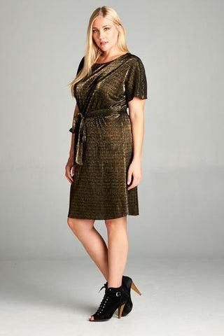 Le Chic in Shimmer Dress