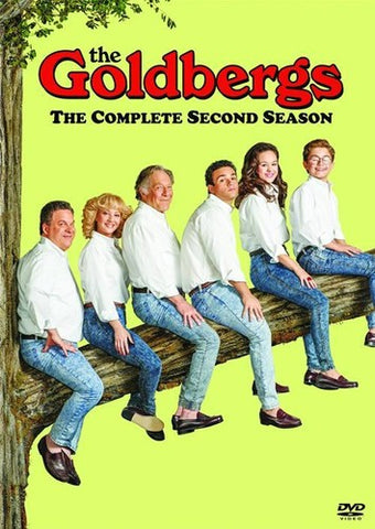 The Goldbergs: The Complete Second Season - (3 Pack, Dolby, AC-3, Widescreen) (DVD)