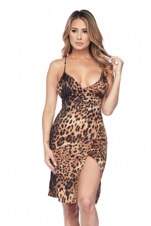 Alessia Leopard Dress