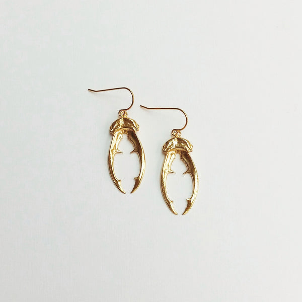 Beetle horn earrings (gold plated)