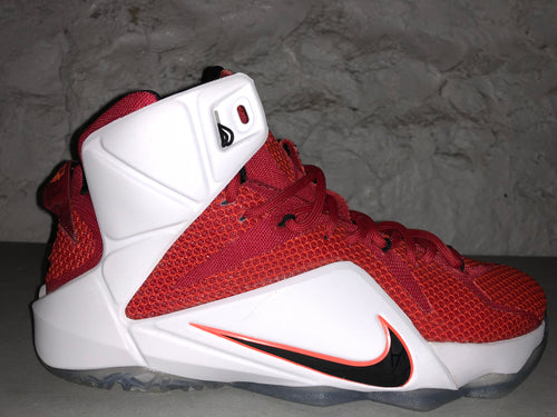 "Size 10 Lebron 12 ""Heart of a Lion"""