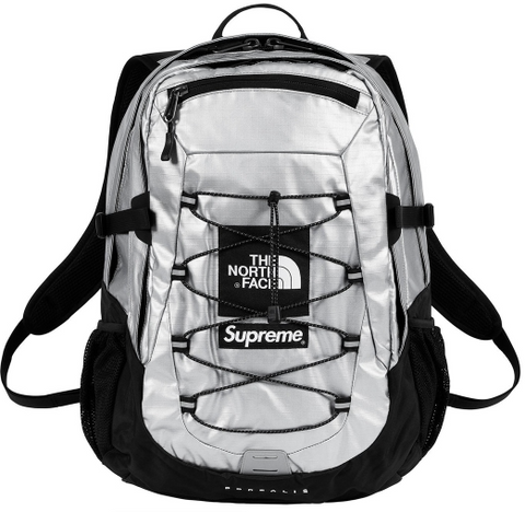 Supreme x The North Face Metallic Backpack