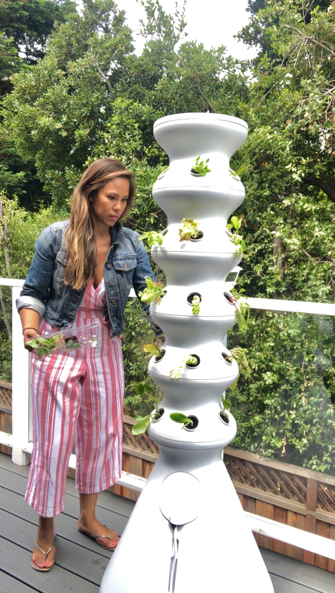 DIY Vertical Planter - Hydroponic Garden Farmstand - Lettuce Grow - Grow Your Own Food - Pretty Collected