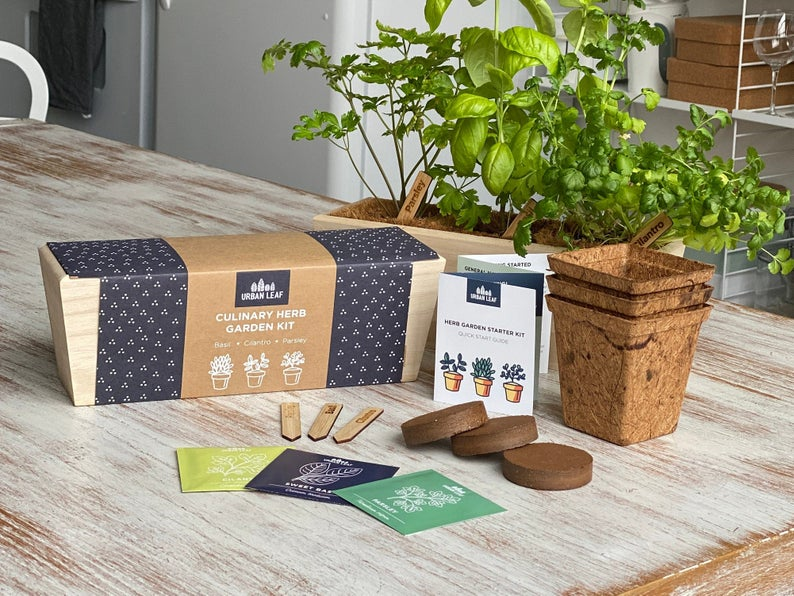 Herb and Vegetable Garden Kits | Includes Planter, Pots, Soil, Labels and Seeds | Windowsill Herb Garden