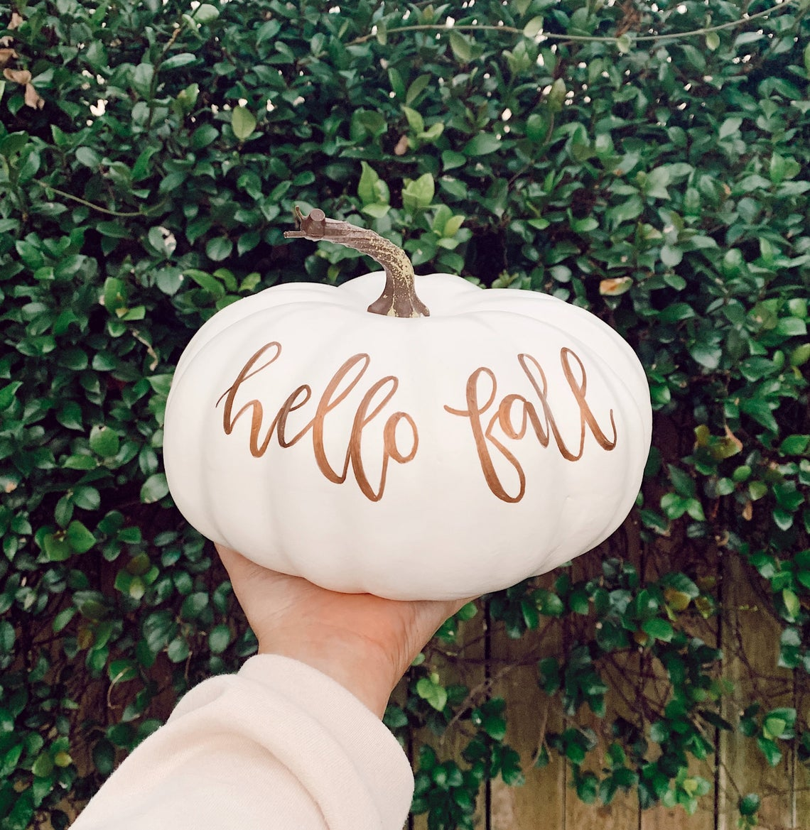 Personalized Pumpkin, Custom Pumpkin, Fall Decor, Large Pumpkin, White Pumpkin, Seasonal, Halloween Decor, Porch Pumpkin, Lettered Pumpkin