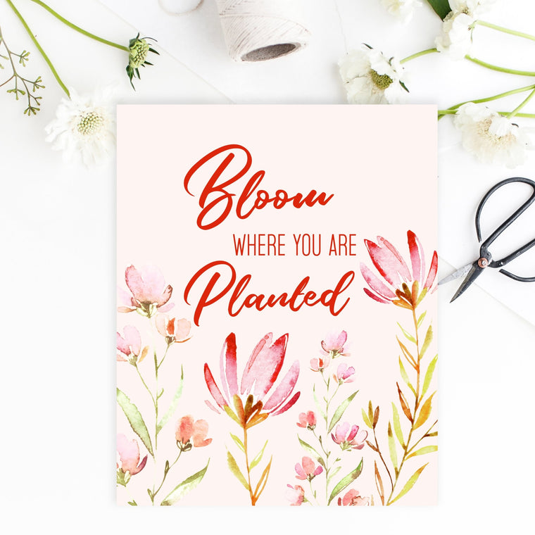 Bloom Where You Are Planted - FREE Printable - Pretty Collected