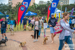 Paws on the Promenade dog walk