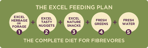 Burgess Excel Feeding Plan