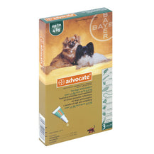 Advocate Dog (1-4kg) Small