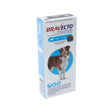 Bravecto Large Dog 20-40kgs
