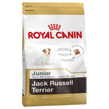 Royal Canin Canine Breed Jack Russell Junior