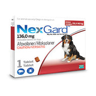 NexGard Chewables Dog (25-50kg)