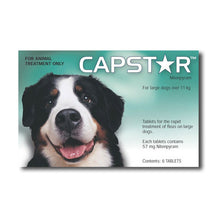 Capstar Dogs Over 11kg