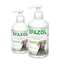 Efazol Essential Fatty Acids with Zinc