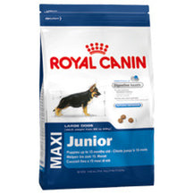 Royal Canin Maxi Puppy Food